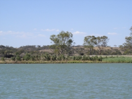 A0012Cruising the Murray River